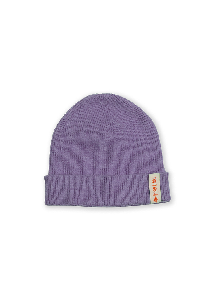 Purple cuffed beanie by Lobster snowboards