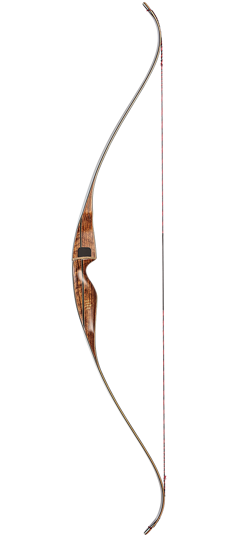 Bear Super Grizzly - Right Hand - 65 Traditional Bow - Adult_1