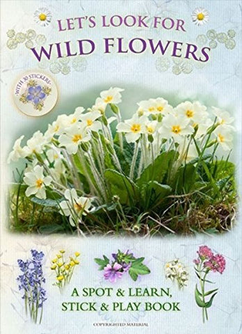 Let's Look for Wild Flowers - A Spot & Learn, Stick & Play Book