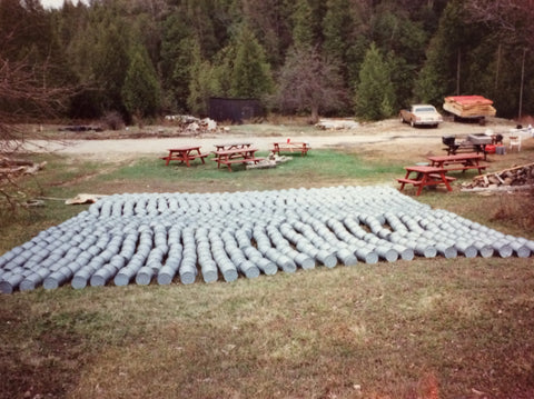At the end of the maple season, the maple syrup buckets were washed and then laid out in the sunshine.