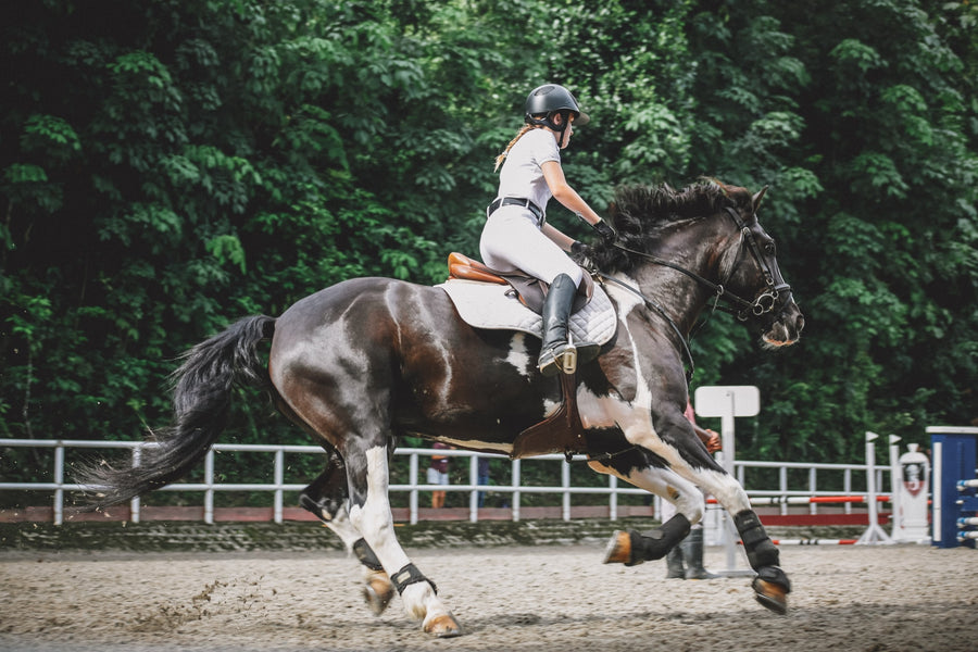 Resistance Band Exercises For Horse Riders