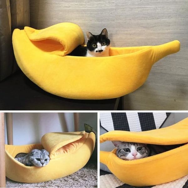 collage cat playing yellow banana cat bed