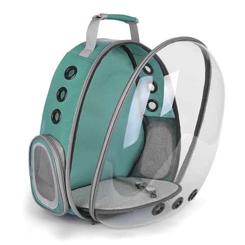 green clear bubble cat backpack front open