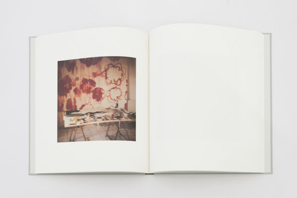 Cy Twombly Photographs - Lyrical Variations
