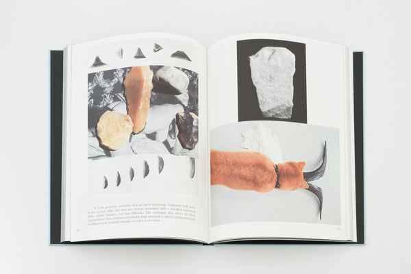 Prehistoric Collections - Camille Henrot