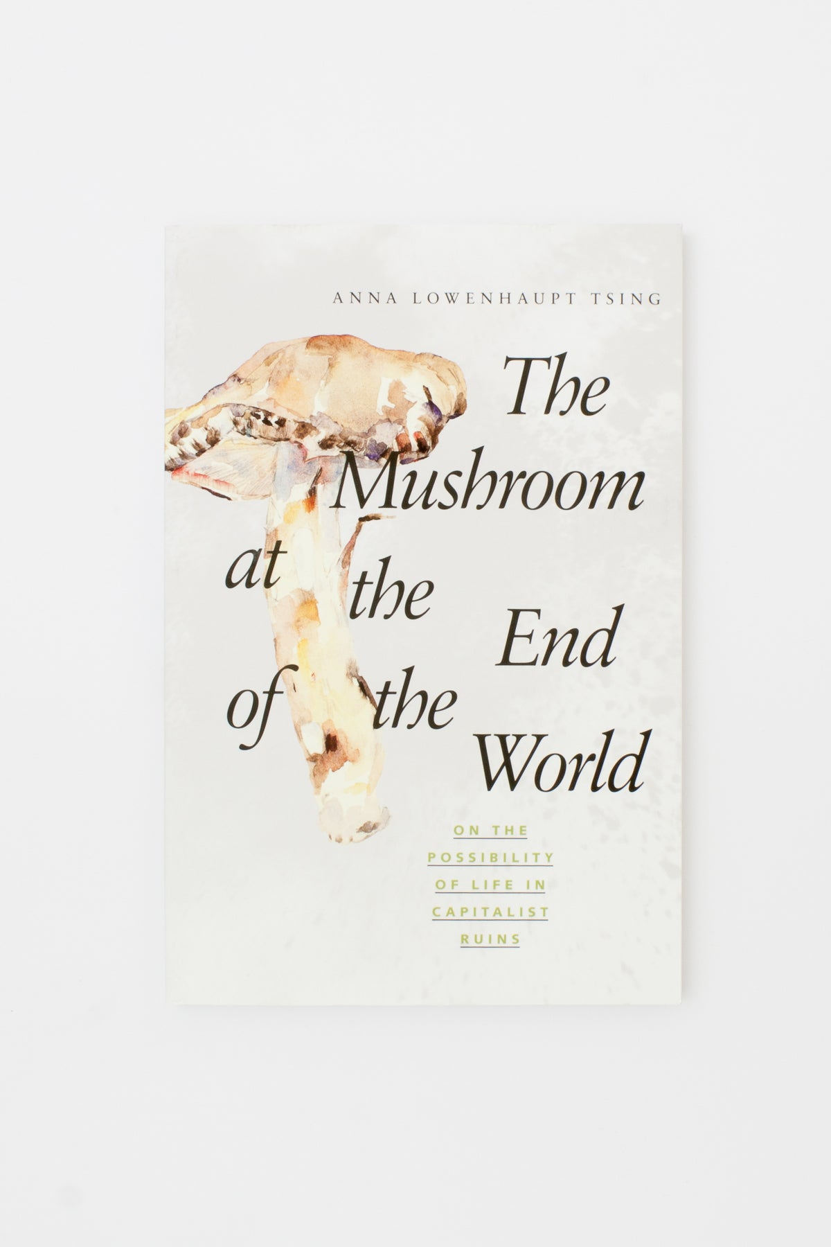 The Mushroom at the End of the World: On the Possibility of Life in Capitalist Ruins - Anna Lowenhaupt Tsing