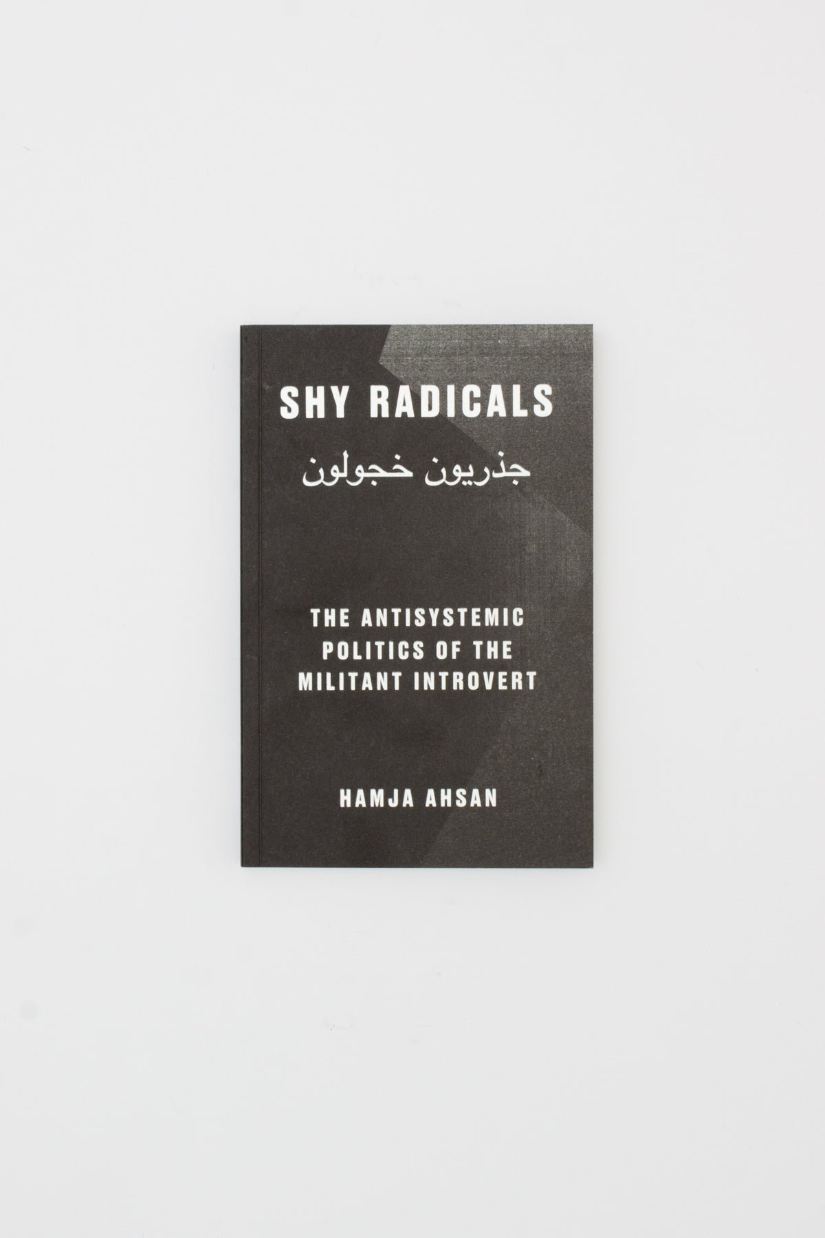 Shy Radicals: The Antisystemic Politics of the Militant Introvert - Hamja Ahsan