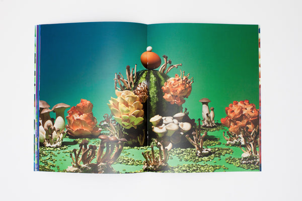 Mushrooms and Friends Zine - Phyllis Ma