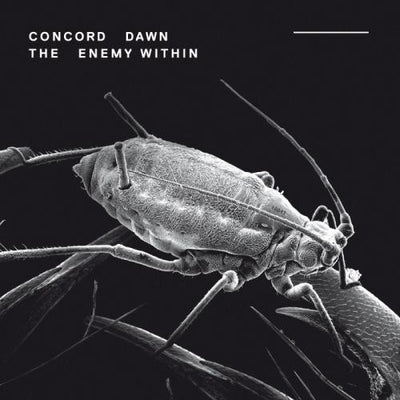 Concord Dawn - The Enemy Within [CD Album] - Unearthed Sounds