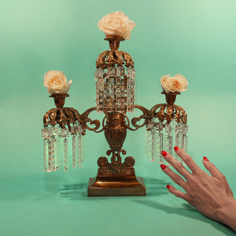 Tropic Of Cancer - Restless Idylls