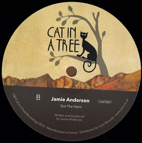 Joshua Iz / Jamie Anderson - Get to Know / Got the Horn