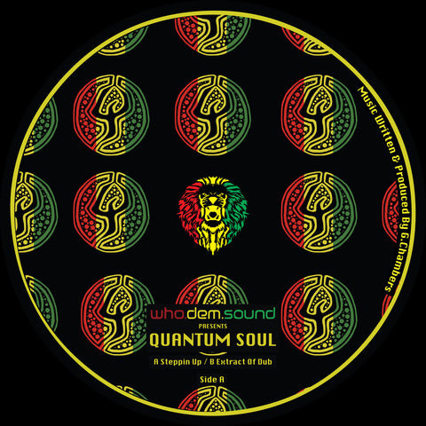 WhoDemSound Presents Quantum Soul