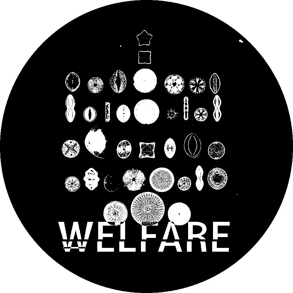 Welfare - WELFARE001 - Unearthed Sounds