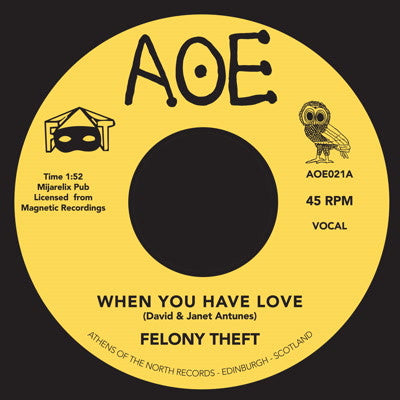 "Felony Theft - When You Have Love [7"" Vinyl] , Vinyl - AOE, Unearthed Sounds"