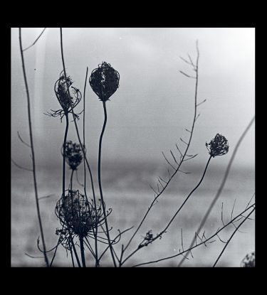 "Recondite - Placid [2x12"" Album & Free Mp3's]"