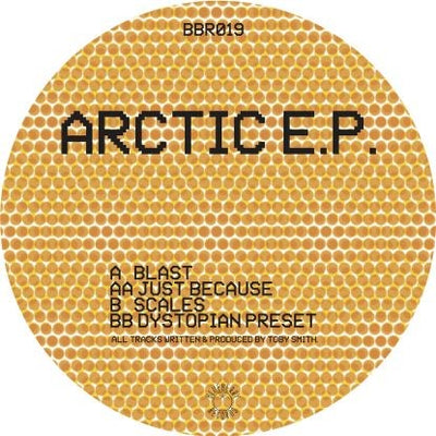 Secret State - Arctic EP - Unearthed Sounds