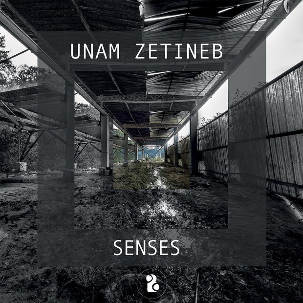 Unam Zetineb - Senses EP , Vinyl - Binary Cells, Unearthed Sounds