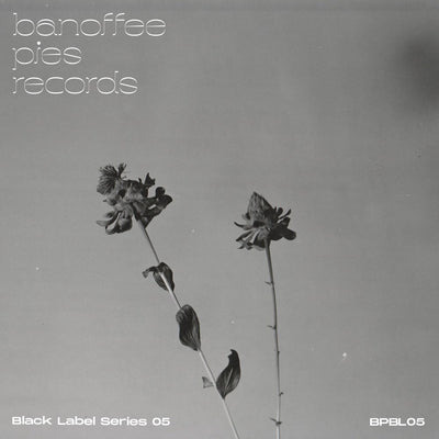 Various Artists - Black Label Series 05 - Unearthed Sounds