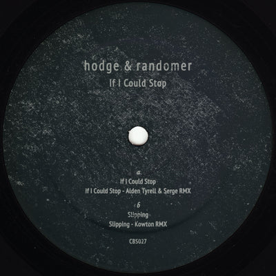 Hodge & Randomer - If I Could Stop