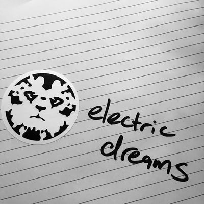 Pickleman - Electric Dreams - Unearthed Sounds