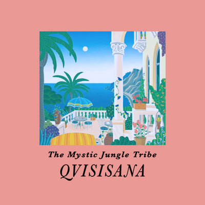 The Mystic Jungle Tribe - Qvisisana - Unearthed Sounds, Vinyl, Record Store, Vinyl Records