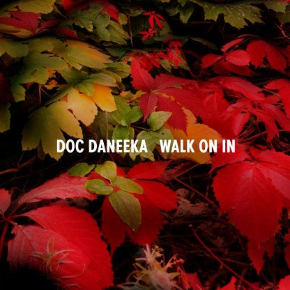 Doc Daneeka - Walk On In - Unearthed Sounds
