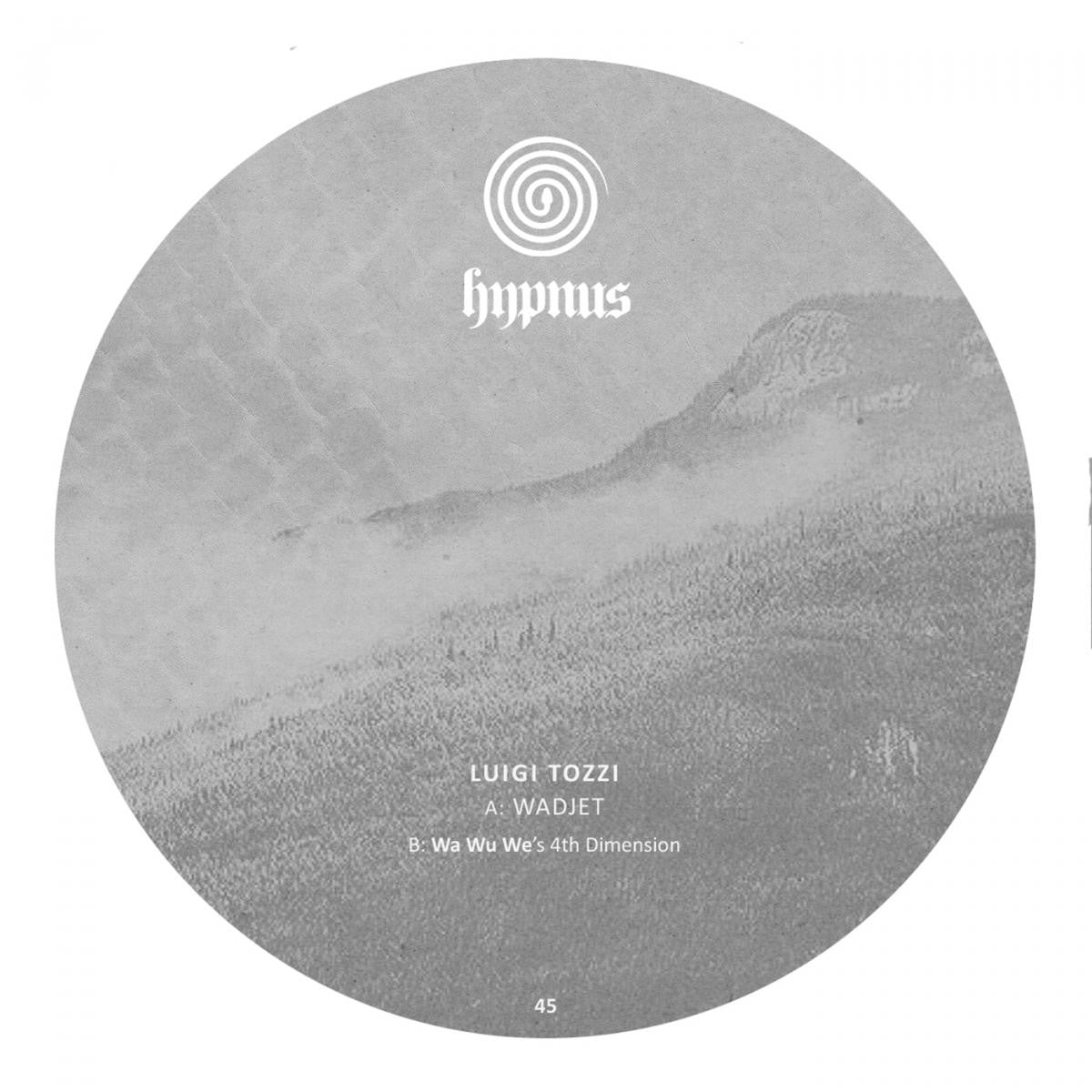 Luigi Tozzi - Wadjet [Wa Wu We Remix] 180g , Vinyl - Hypnus Records, Unearthed Sounds