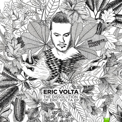 Eric Volta - The Dissolution of Eric Volta - Unearthed Sounds, Vinyl, Record Store, Vinyl Records