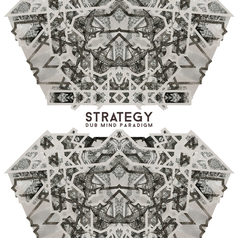 Strategy - Dub Mind Paradigm LP