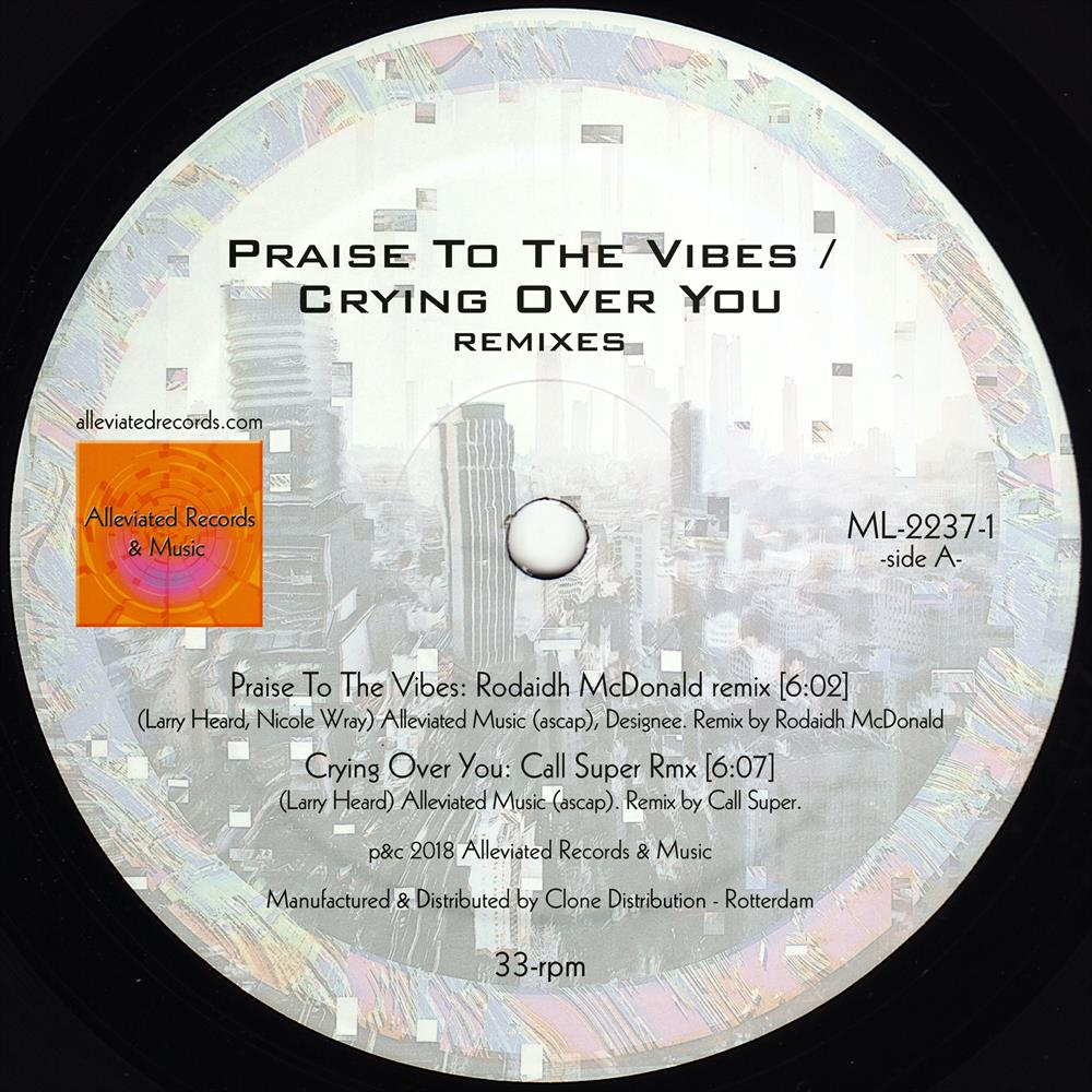 Mr. Fingers - Praise to the Vibes / Crying Over You Remixes