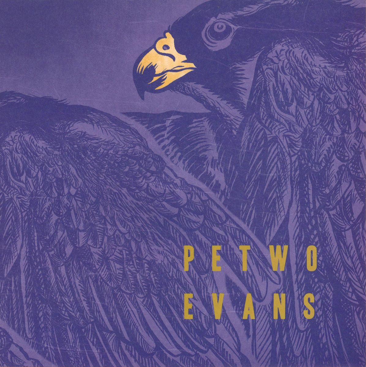 Petwo Evans - Tumble - Unearthed Sounds