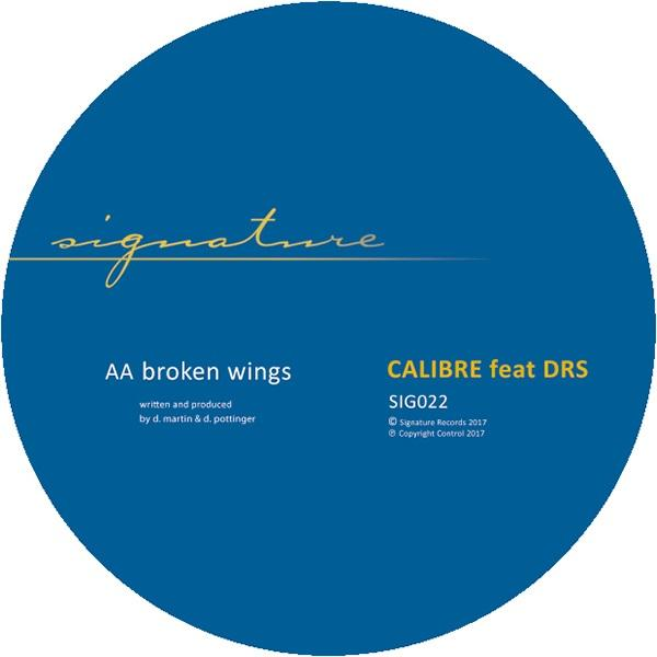 Calibre & DRS - Sunshine