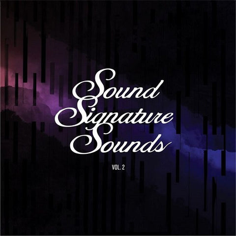 Theo Parrish ‎– Sound Signature Sounds Vol. 2