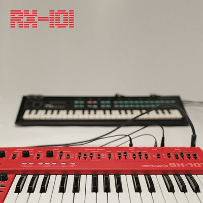 RX-101 - EP 2 - Unearthed Sounds, Vinyl, Record Store, Vinyl Records