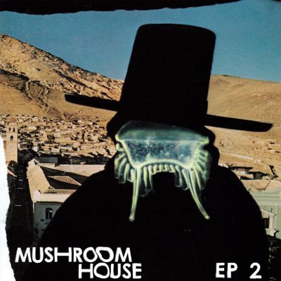Various Artists - Mushroom House EP 2 , Vinyl - Toy Tonics, Unearthed Sounds