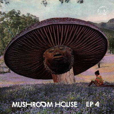 Various Artists - Mushroom House EP 4 - Unearthed Sounds