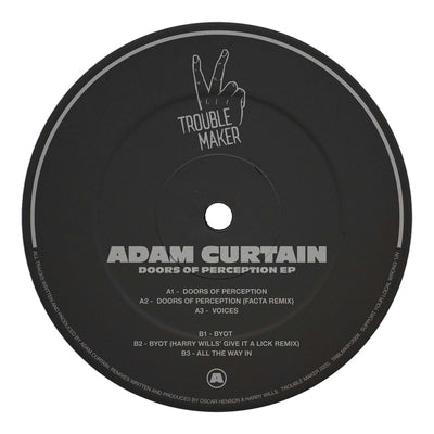 Adam Curtain - Doors of Perception (inc. Facta & Harry Wills Remixes) - Unearthed Sounds