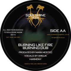 Soulshine Musik - Show Dem / Zion Irie + Burning Like Fire / Amelia Harmony - Unearthed Sounds