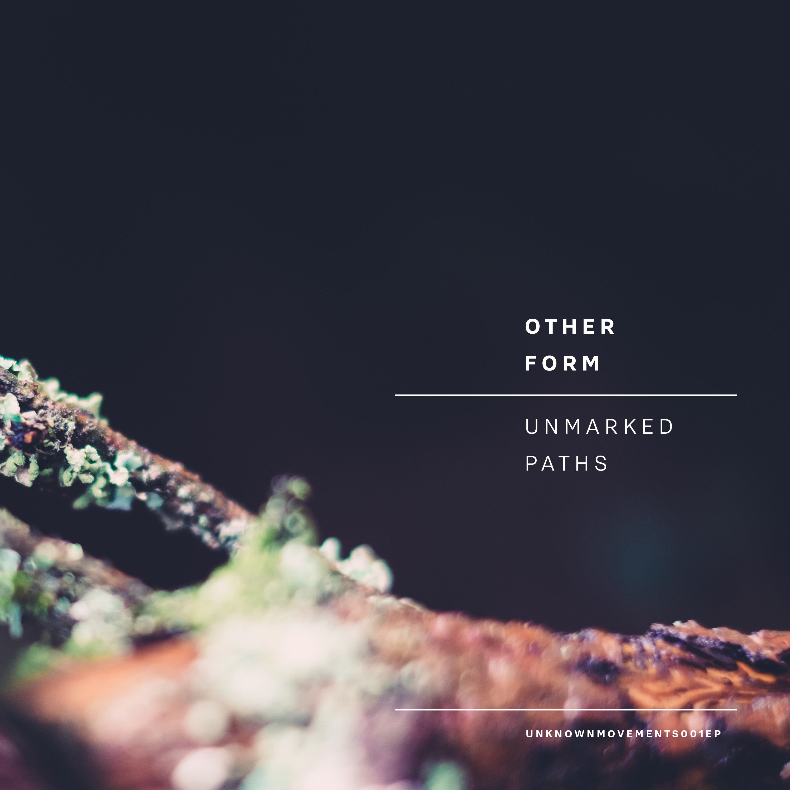Other Form - Unmarked Paths