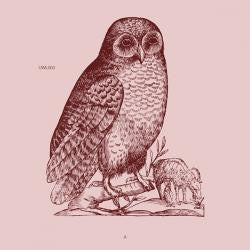 Unknown Artist - Owl 3