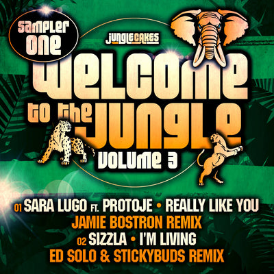 Welcome To The Jungle Volume 3. Sampler 1 , Vinyl - jungle cakes uk, Unearthed Sounds