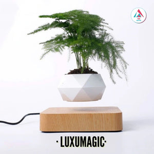 LUXUMAGIC