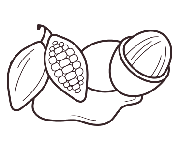 Shea nut and cacao pod illustration