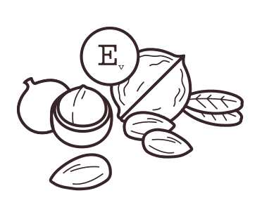 Vitamin E illustration