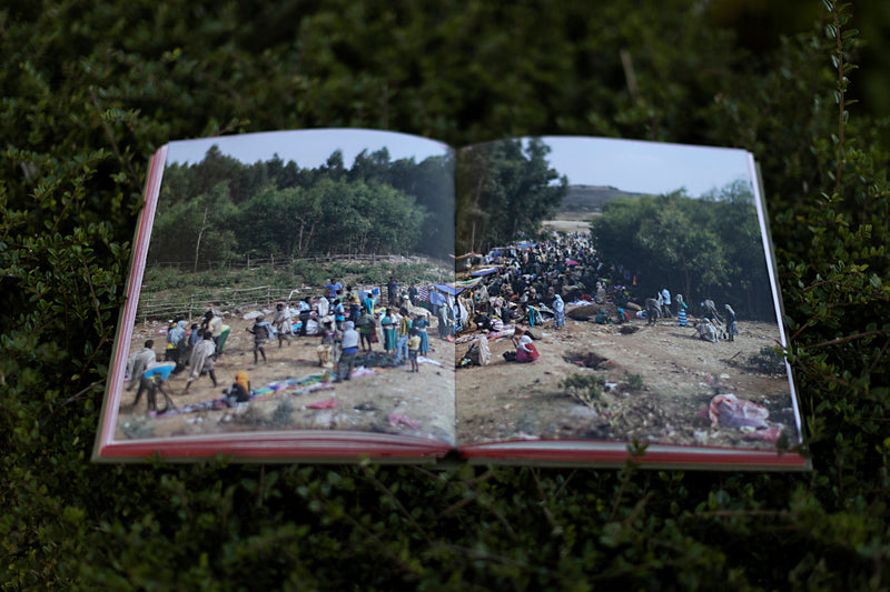 THE CHURCH FORESTS OF ETHIOPIA book