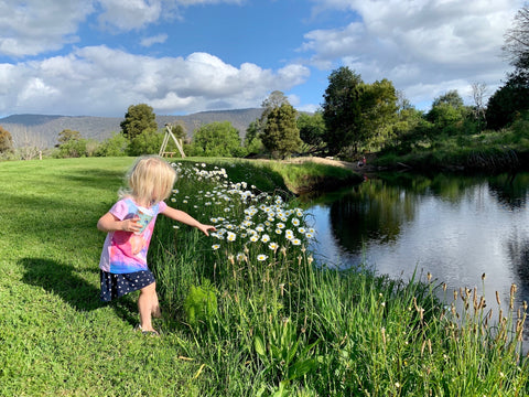 Huon Valley Picking flowers