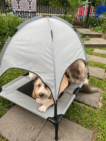 ResTED Elevated Dog Bed with Removable Canopy