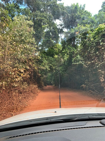 Road to the Tip, Cape York
