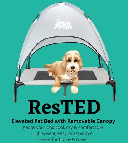 ResTED Elevated Dog Pet with removable canopy
