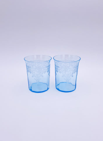 Set of 2 Etched Tumbler Glasses
